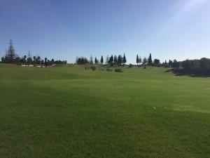 Los Olivos - 18 hoyos abiertos - 18 holes open