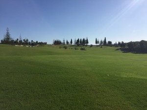 Mijas Golf - Los Olivos - 9 hoyos disponibles - 9 holes available
